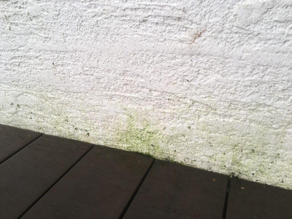 簡単!外壁汚れの洗浄剤